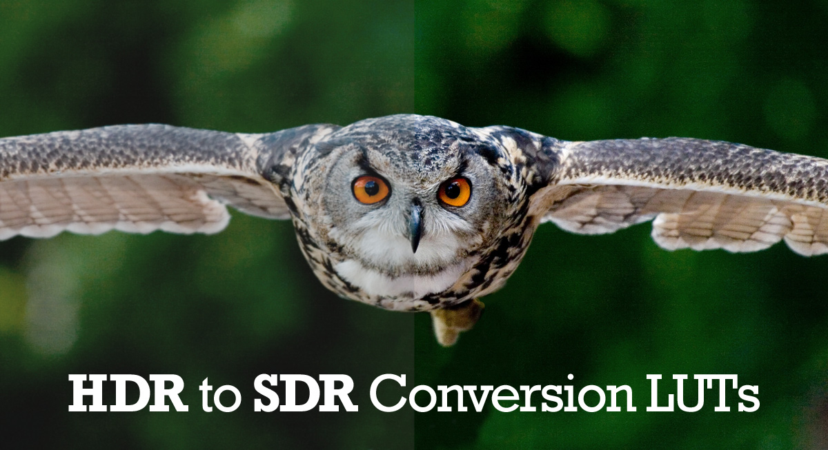 HDR to SDR conversion